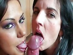 Amateur threesome, Threesome milf, Threesome amateur, Milf amateur, Amateur milf, Amateur suck