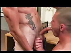 Swallow gay, Swallow group, Swallows group, Swallowing gay, Group swallow, Group cum swallow