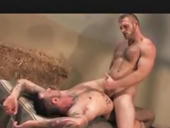 Bareback, Gay bareback, Barebacking, Barn, Bareback gay, Fun sex