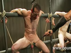Tied, Bar, Gay bondage, Tied and sex, Sex tie, Gay tied