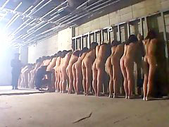Prison, Asian strip, Prison strip, Prison asian, Strip asian, Asian prisoners