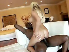 Lexington, Lex on blondes, Lex steele, Lexington steel, Lexington steele, Lex