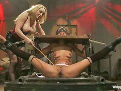 Whip, Whipping, Whipped, Layla, Aiden starr, Aiden