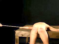 Whipping spank, Dr lomp world, The l world, Whipping bdsm, Whipping spanking, Spanking amateur