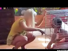 Wax, Lesbian wax, Waxe, Spanking and domination, Lesbian cage, Cages