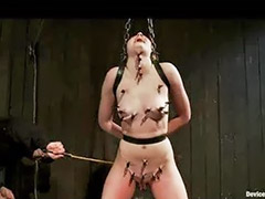 Caning, Cane, Clip, Caned, Clips-x, R-clip