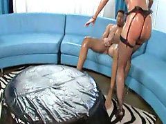 Kelly divine, Kelly-divine, Kelli divine, Divine kelly, Kelly divine, Oiled up