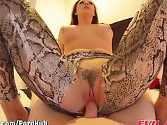 Spandex, Chanel preston, Spandex,, Spandex fuck, Chanel-preston, Evil angel