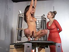 Sybian, Fucked and bound, Sybian bound, Bound and fucked, Bound and fuck, Sybians