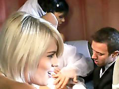 The brides, Share the bride, Share bride, Grooming, Groom bride, Bride sharing