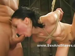 Tied, Breast, Huge breasts, Ties, Tied breast, Wall