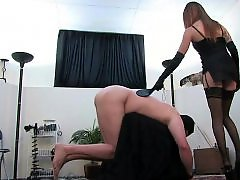 Mistress handjobs, Mistress fuck, Mistress emily, Milk fuck, Milk and handjob, Milk and fuck