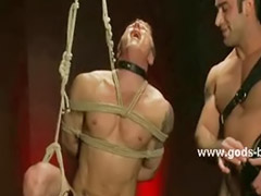 Muscle, Muscles, Master, Gay muscle, Muscled, Gay bondage