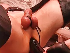Slave, Humiliation, Sex slave, Balls, Couple slave, Slave gay