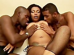 Buster, Nuts, Nutting, Nut lưỡi, Bis sex, Bi-sex