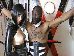 Mistress, Abused, Mistress t, Femdom handjob, Abuse