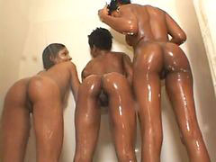 Diamond foxxx, Foxxx, Diamond black, Black diamond