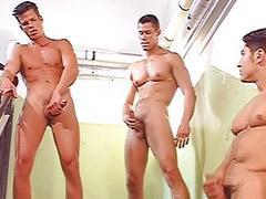 Boxing, Boxing gay, Great cumming, Gay good, Bathroom gay, Anal toys bathroom