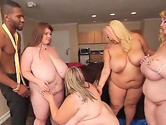 Hot bbw, Stud on stud, Black stud, Bbw hot, Bbw