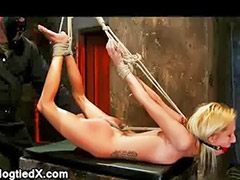 Whip, Whipping, Hogtied, Whipped, Flexible, Hogties