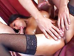 Alexis, Woman cums, Amoral, Black woman, Big titty, Tattoo big tits pornstars