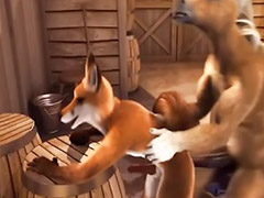 Stable, The table, Fox in the stable, Fox in stable, In stable, Fox