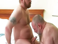 Gay mature, Mature hairy, Hairy mature